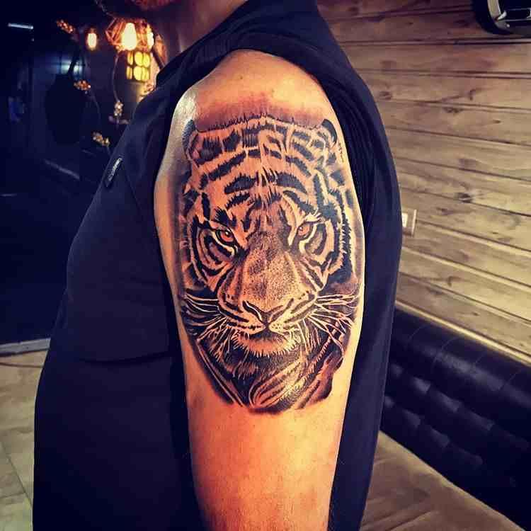 art-on-skin-nagpur-beceip-color-tiger